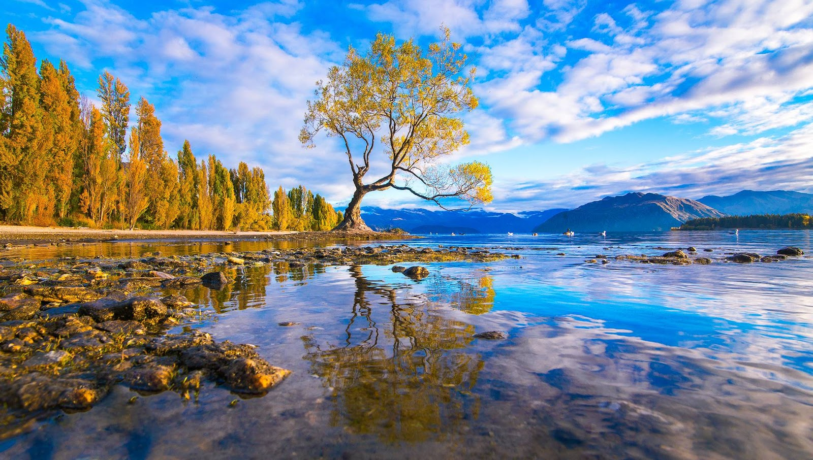 Wanaka, New Zealand HD Background