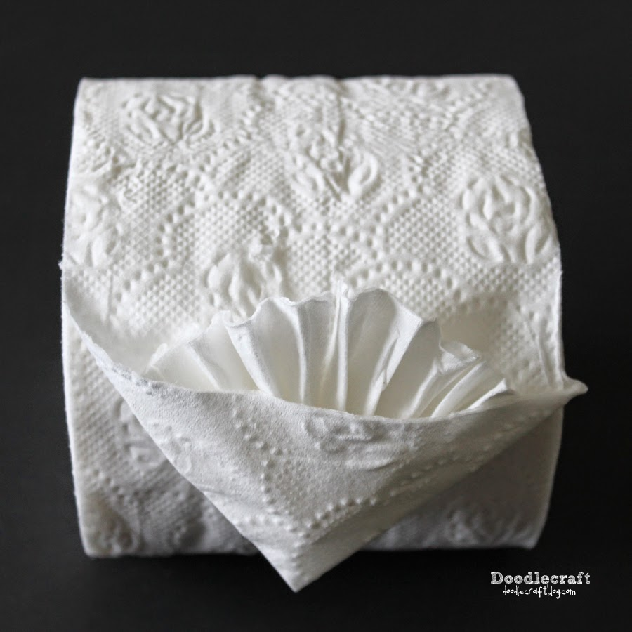 Fancy Toilet Paper