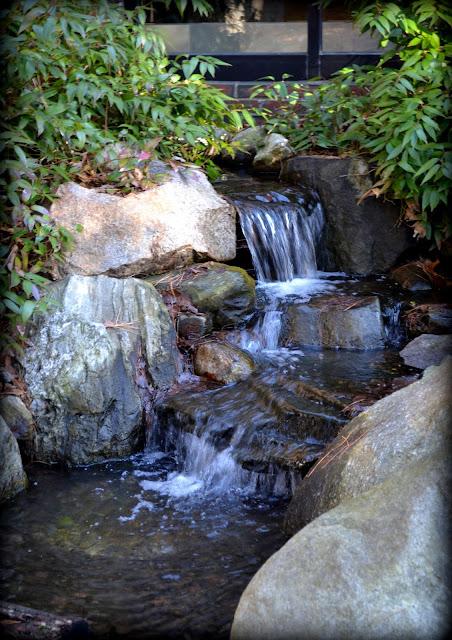 Waterfalls, Healing Garden, Lynn Union Hospital - Koi Stream, Lynn, Massachusetts, shadow, koi