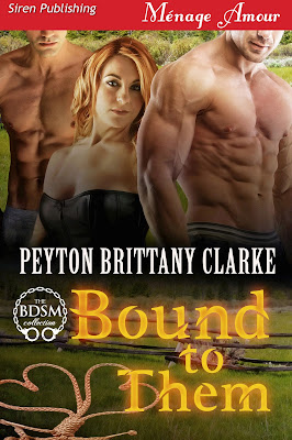 Contemporary, BDSM, Cowboy, Menage, Erotic Romance Novel