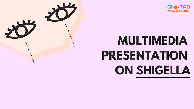 Multimedia Presentation on Shigella