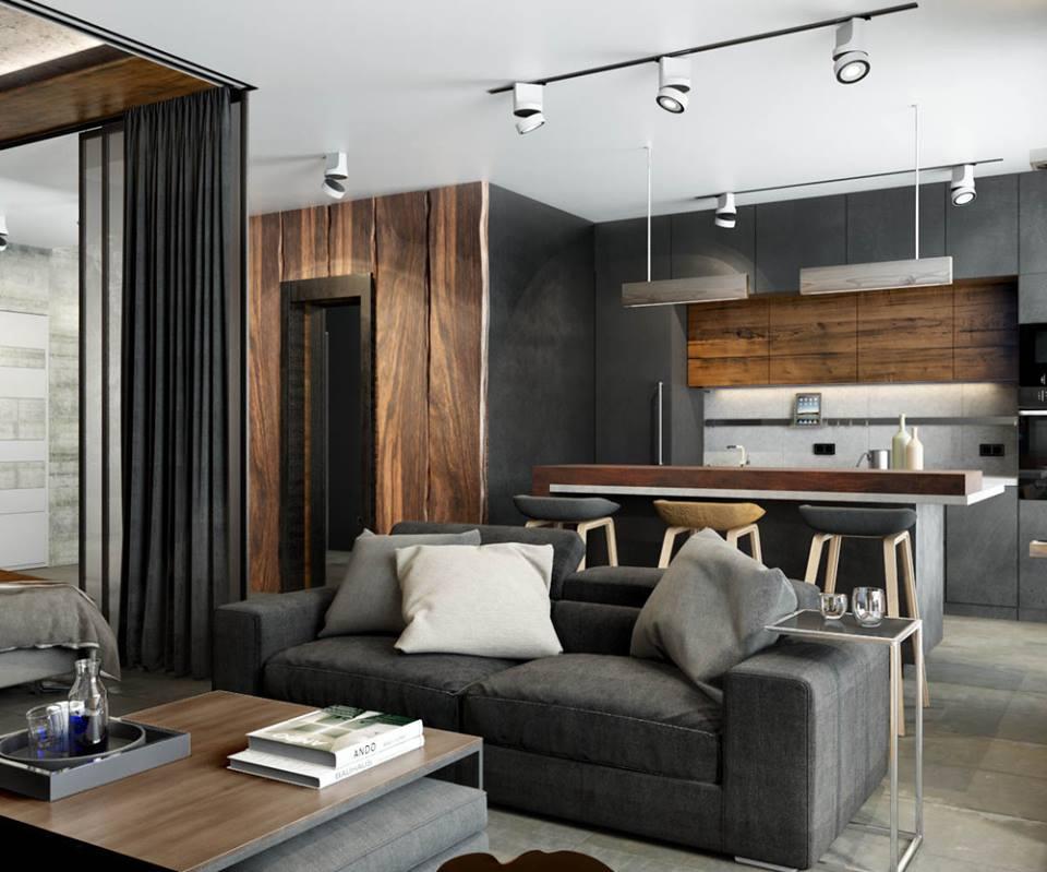 Proiect de amenajare masculin ntr un apartament de 2 for Camere design