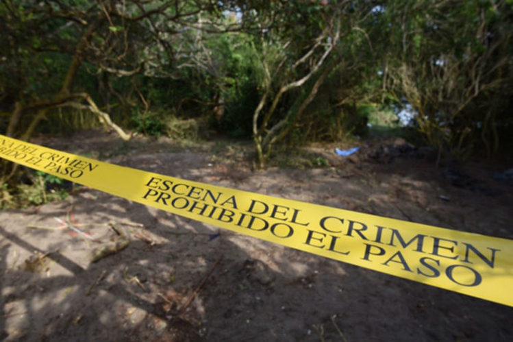 Hallan 46 cráneos y cientos de restos humanos en nueva narcofosa en Alvarado, Veracruz