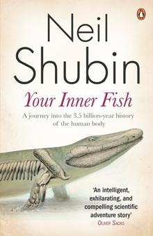 https://i1.wp.com/3.bp.blogspot.com/-SIC0yD-ZbVc/UHczwx-dYNI/AAAAAAAAIVk/wFFIdOhUj28/s1600/Inner+fish.JPG