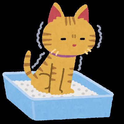 猫砂の上で踏ん張る猫のイラスト
