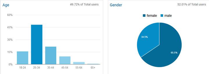 Demografik Pengunjung