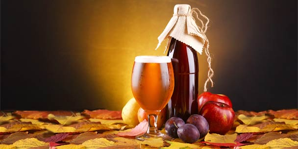 Forbidden Fruit Beer or Fruit Beer - Which one is a Good Choice?