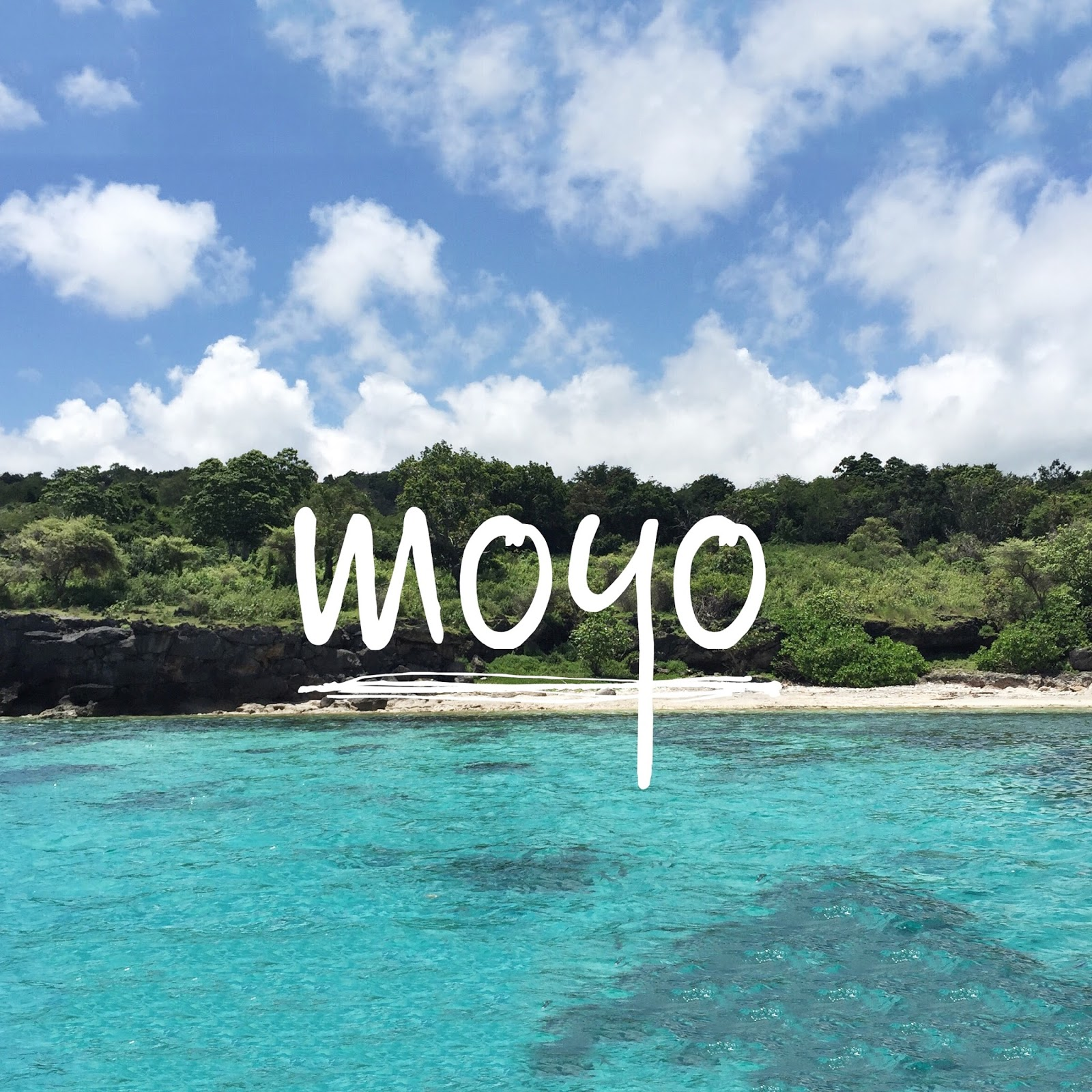 cerita febrian pengalaman sasaat di pulau moyo rh ceritafebrian com
