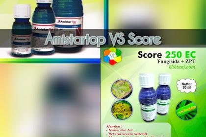 Adu Jago Amistartop vs Score. Siapa Unggul?