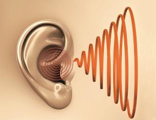 Apa Penyebab Tinnitus ??