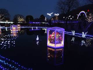 Ashikaga illuminations