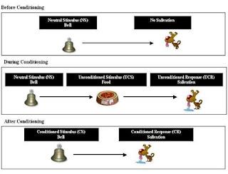 Perbedaan antara Classical dan Operant Conditioning