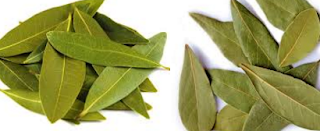 Bay leaf, Tej Patta Spice name in different Indian languages (regional)
