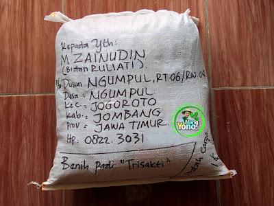 Benih pesana   M. ZAINUDIN Jombang, Jatim  (Sesudah Packing)