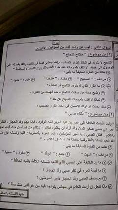 امتحان بور سعيد للصف السادس الإبتدائى لغة عربية ترم أول 2015 10923513_15384583864