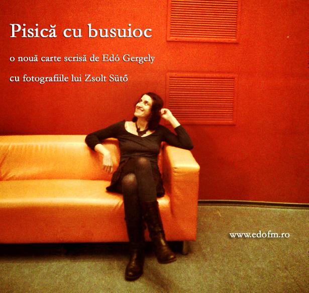 Edó, Gergely Edó, carte, könyv, Cluj-napoca, yoga, coaching, constelatii familiale