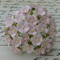 http://www.essy-floresy.pl/pl/p/Kwiatki-Sweetheart-Blossom-dwutonowe-rozowe/952