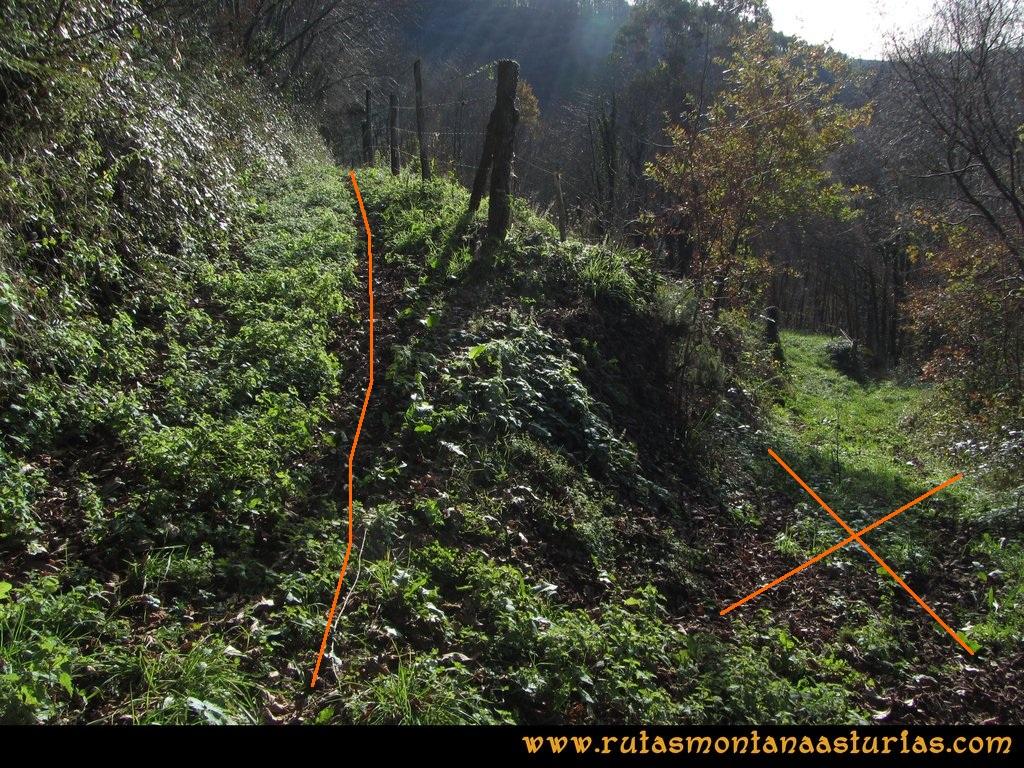 Senda de Bustavil, Tineo, PR AS-288: Saliendo de Bustellón hacia El Valle de Tablado
