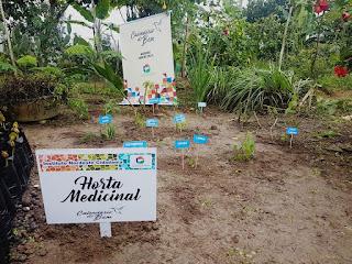 Representantes do Inec implantam horta medicinal em Serra Nova