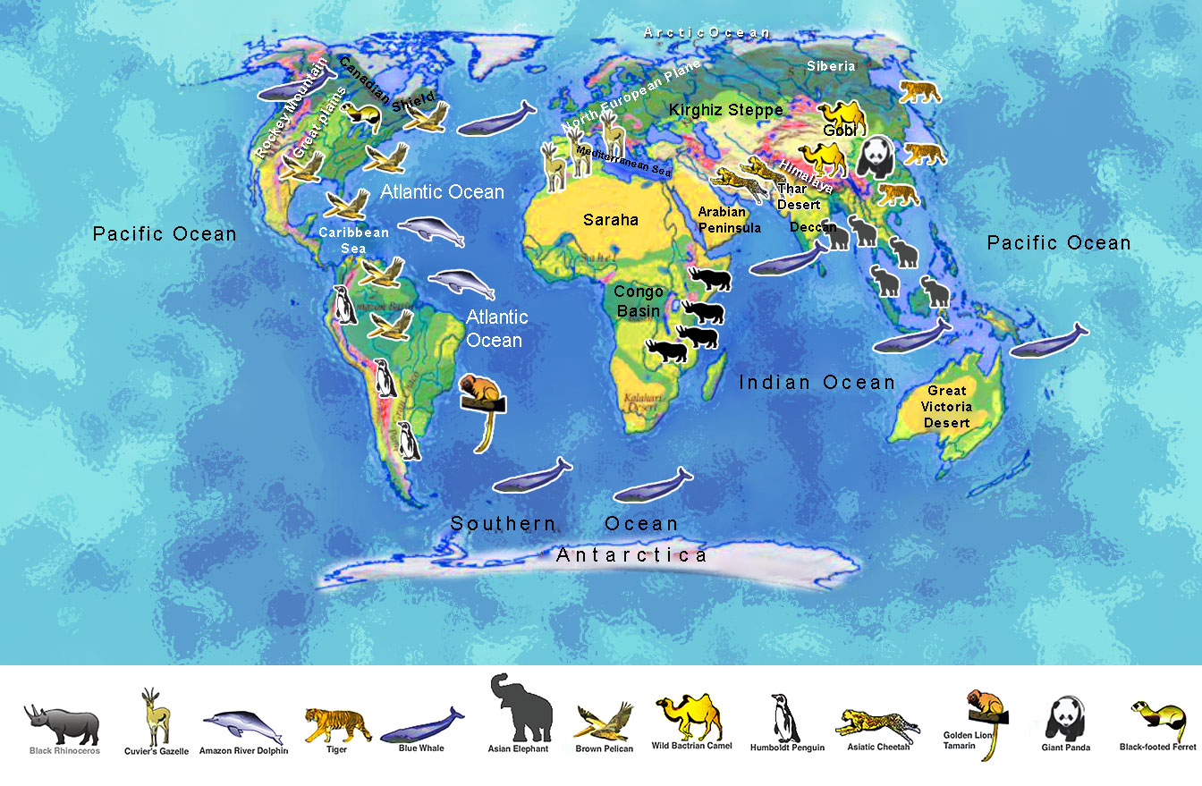 Maps reveal which countries have the most endangered ... |Endangered Animals Map