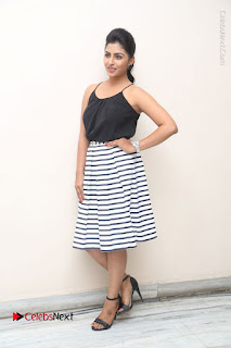 Telugu Actress Kruthika Jayakumar Stills in Short Dress at Intlo Deyyam Nakem Bhayam Success Meet  0272.JPG