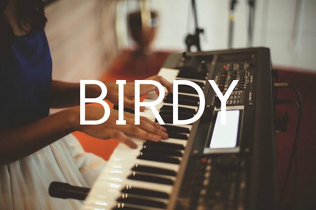 Desculpe o transtorno mas precisamos falar da Birdy!