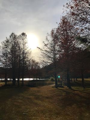 イメージ画像:冬空