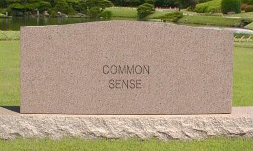 essay on common sense common sense essay personal essay introduction