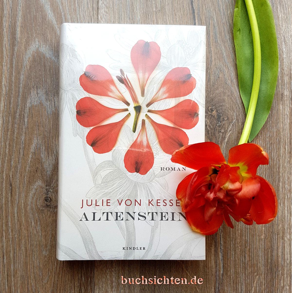 Buchsichten: [Rezension Ingrid] Altenstein von Julie von Kessel