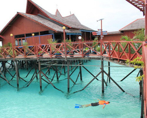 Tinuku.com Travel Derawan islands and atolls in East Kalimantan diving and snorkeling paradise watch sea turtles and manta