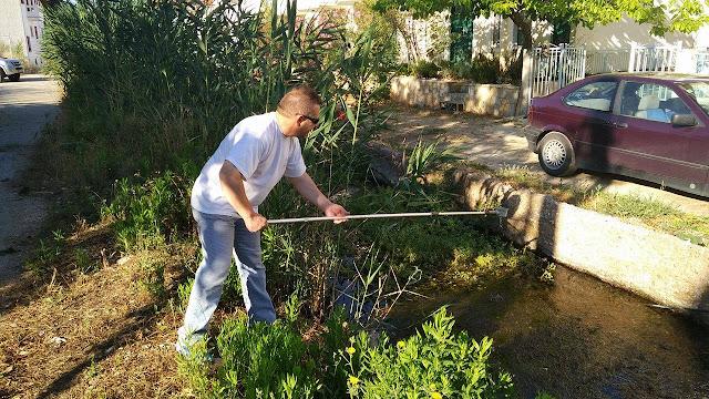 Καταπολέμηση κουνουπιών στο Δήμο Ναυπλιέων