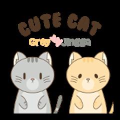 Cute Cat : Grey & Jingga