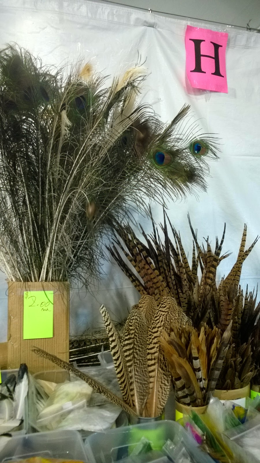 Peacock, pheasant and hawk feathers