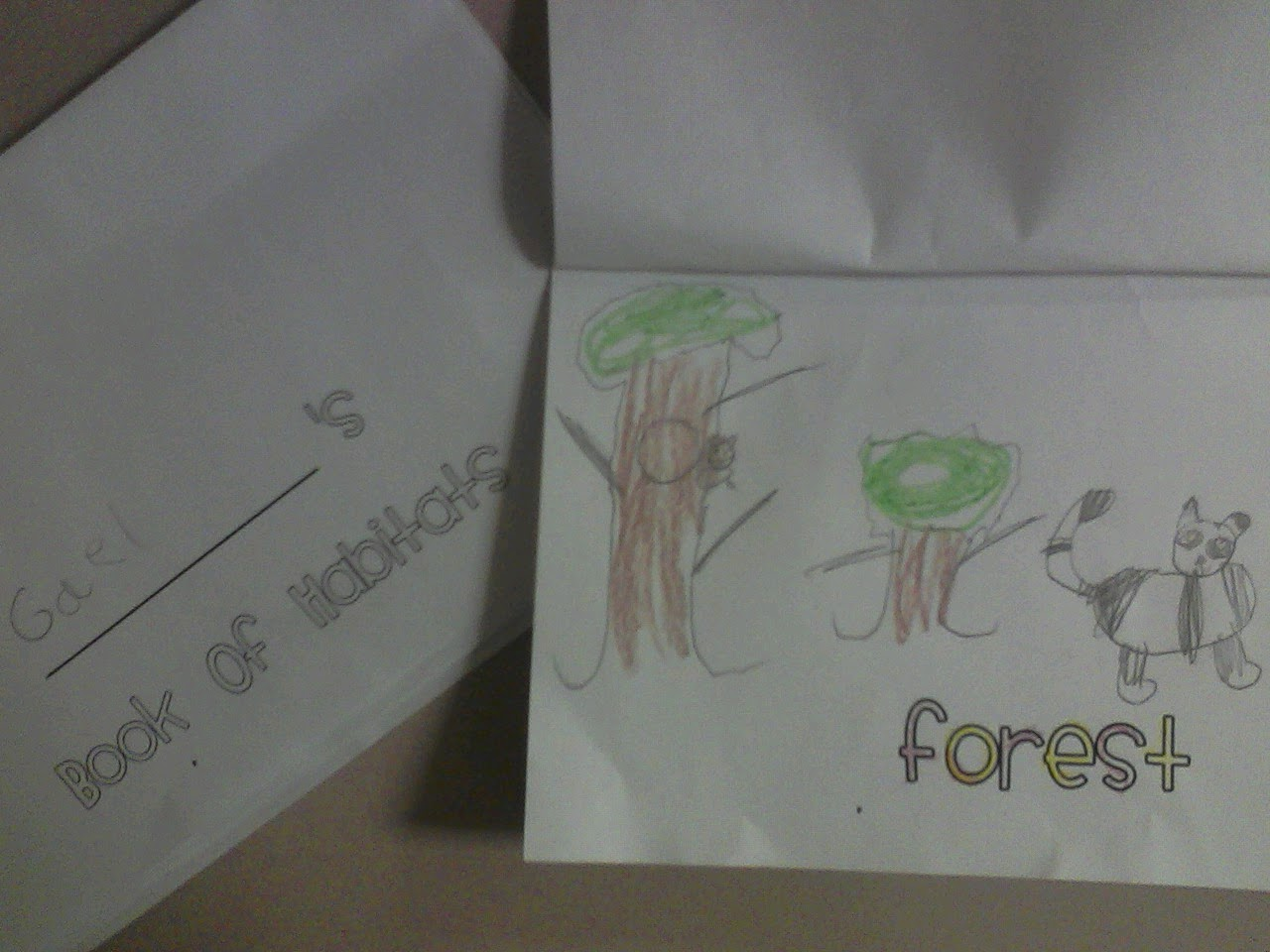 Miss Llewellyn S Kindergarten Animal Habitats