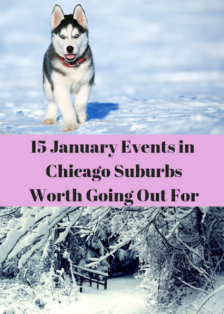 15 January Events in the Chicago Suburbs Worth Going Out For