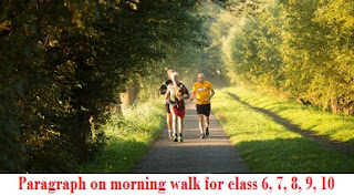 Paragraph on morning walk for class 6, 7, 8, 9, 10