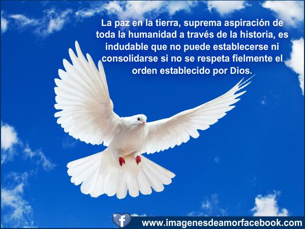 Bonitas Frases De Paz Y Amor