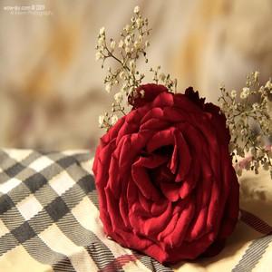 رمزيات حب جامدة واتساب , صور رمزيات حب جامده جدا للأنستقرام والفيس بوك