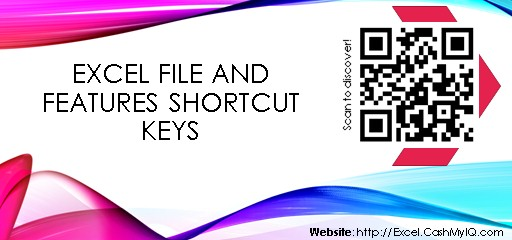 EXCEL FILE AND FEATURES SHORTCUT KEYS