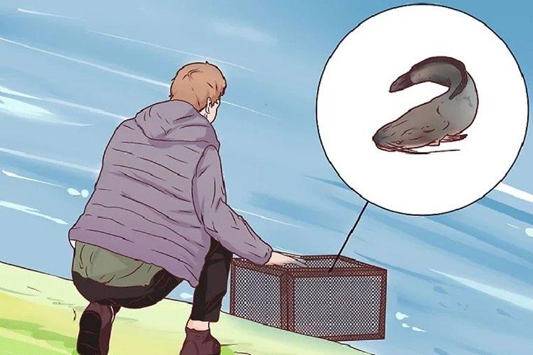 Balık Tutma Sepeti