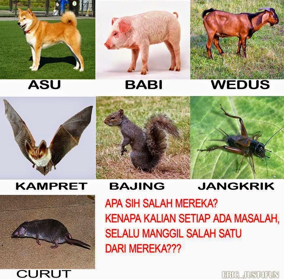 Kumpulan Meme Rage Comic Indonesia MRCI 2014