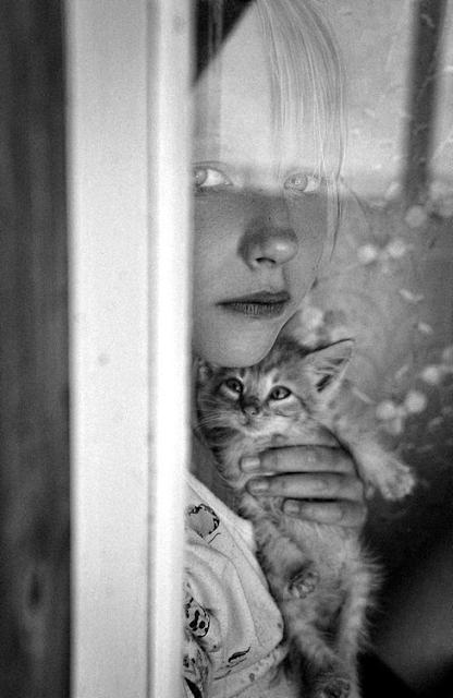 peques-y-gatos