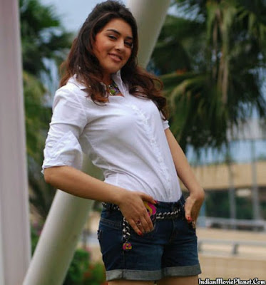 hansika motwani hot stills shorts