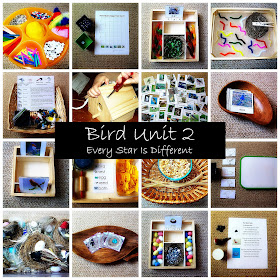 Montessori-inspired Bird Activities for Kids with Free Printables