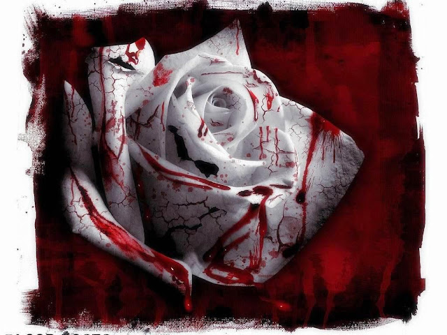 Αποτέλεσμα εικόνας για Όταν αγαπάς τον εαυτό σου πάρα πολύ, γίνεσαι μια πληγή στο σώμα της ανθρωπότητας