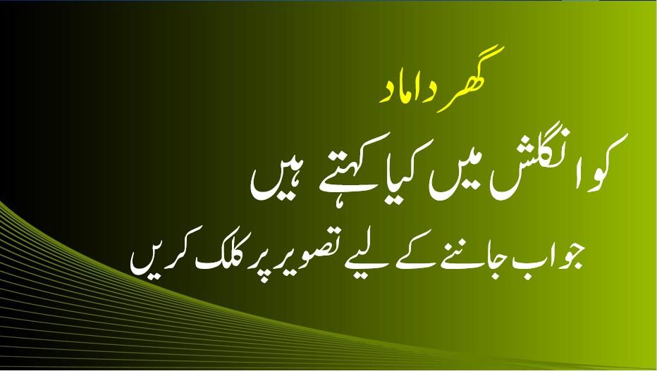 Ghar Damad English Translation   Urdu English Dictionary