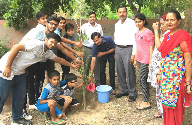 Tikona Park Sector-8, Faridabad, children save money from pocket expenses, planting plantation