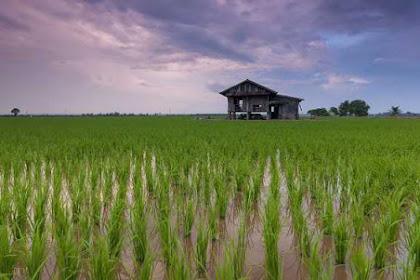 Asas Asas Hukum Agraria Nasional