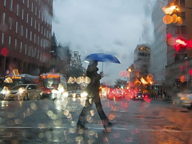 الأمطار في واشنطن .