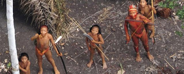 قبائل,غابات,الأمازون,المستعمرون الأوروبيون,أمريكا الجنوبية,البرازيل,الغابات الإستوائية,القبائل المعزولة